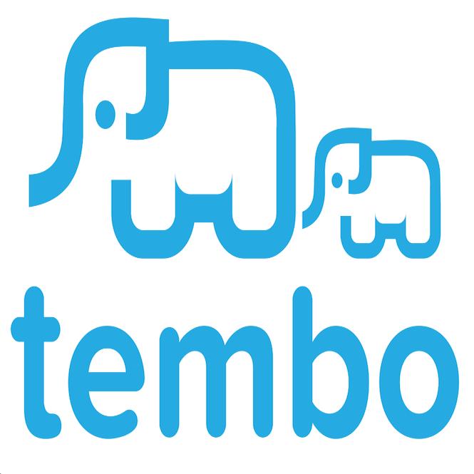 Part-time Twitter Marketer for Tembo Education