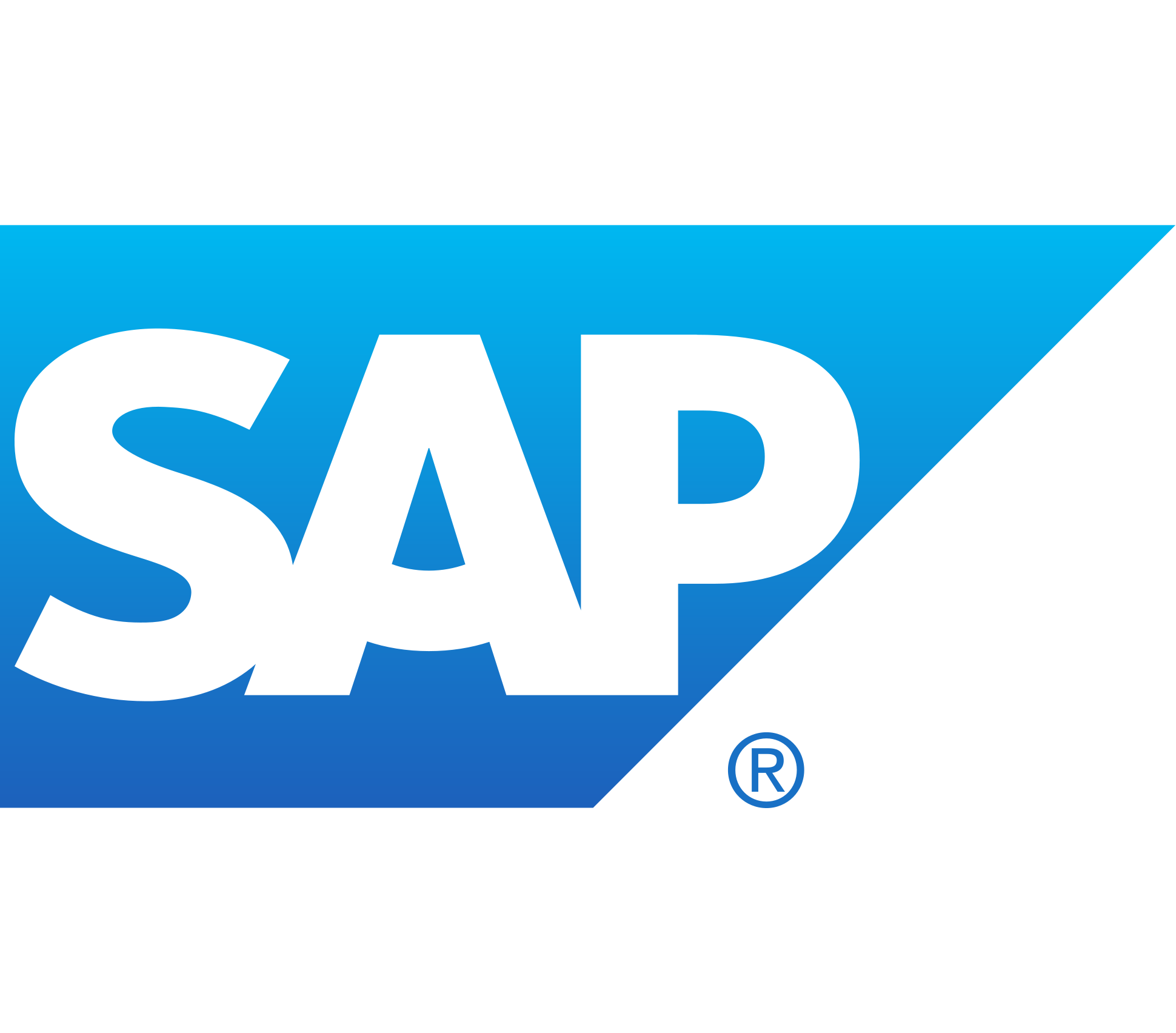 SAP Concur iXp Intern- Finance Job