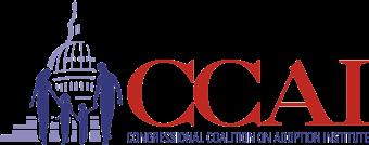 Programs Internship (CCAI Spring 2018)