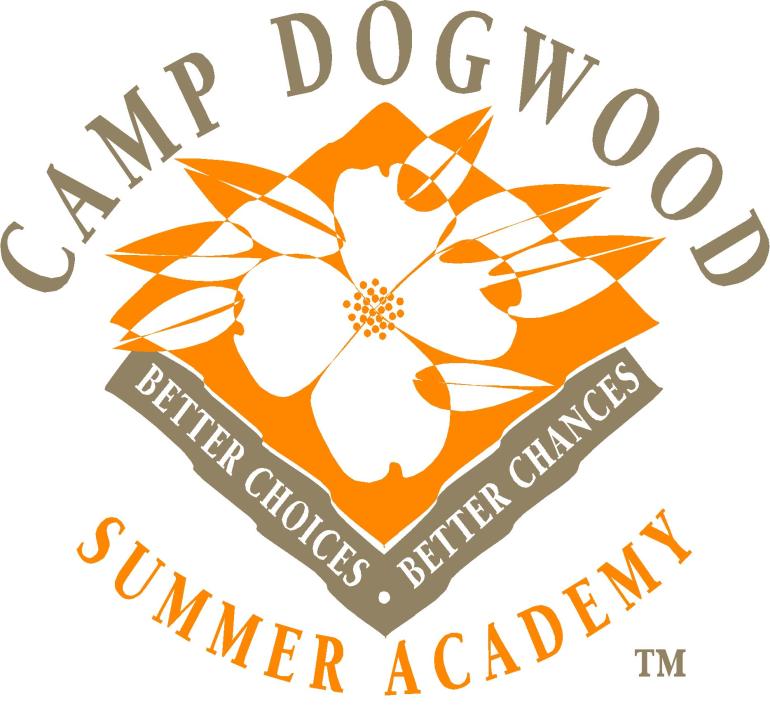Camp Program Assistant